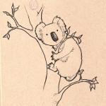 sketch_koala